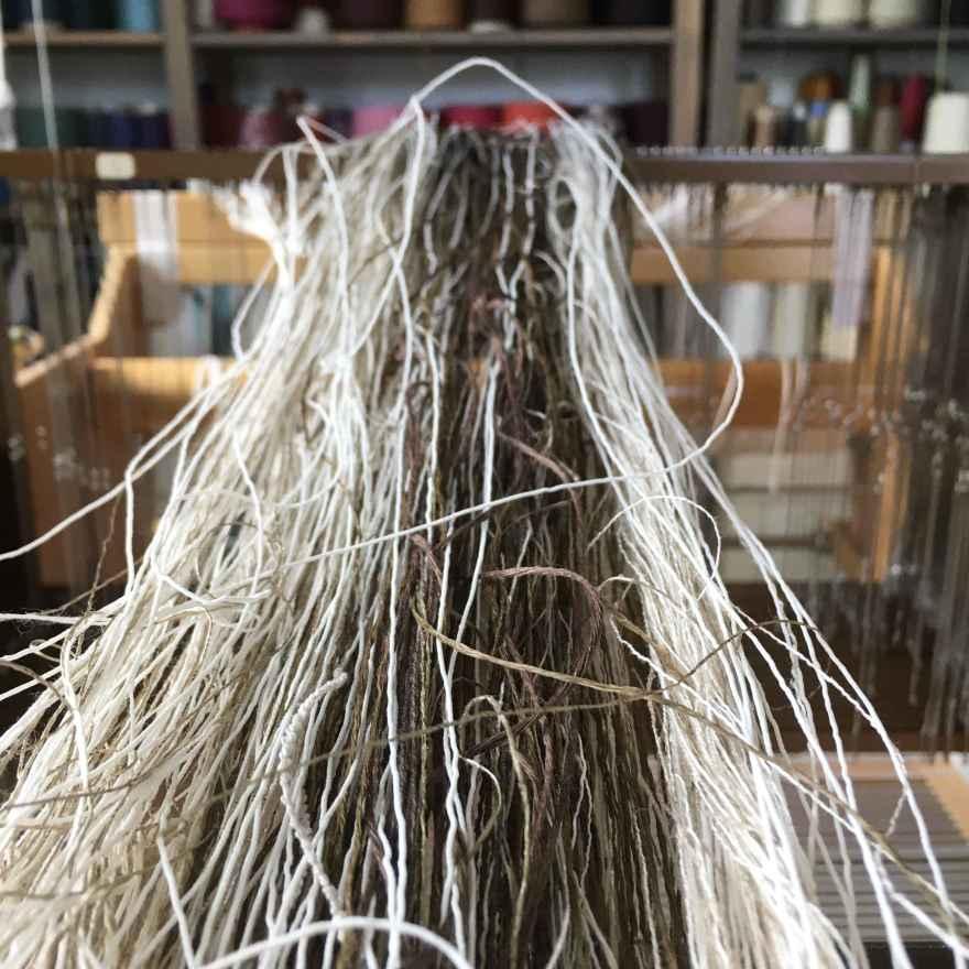 Warp being wound onto loom