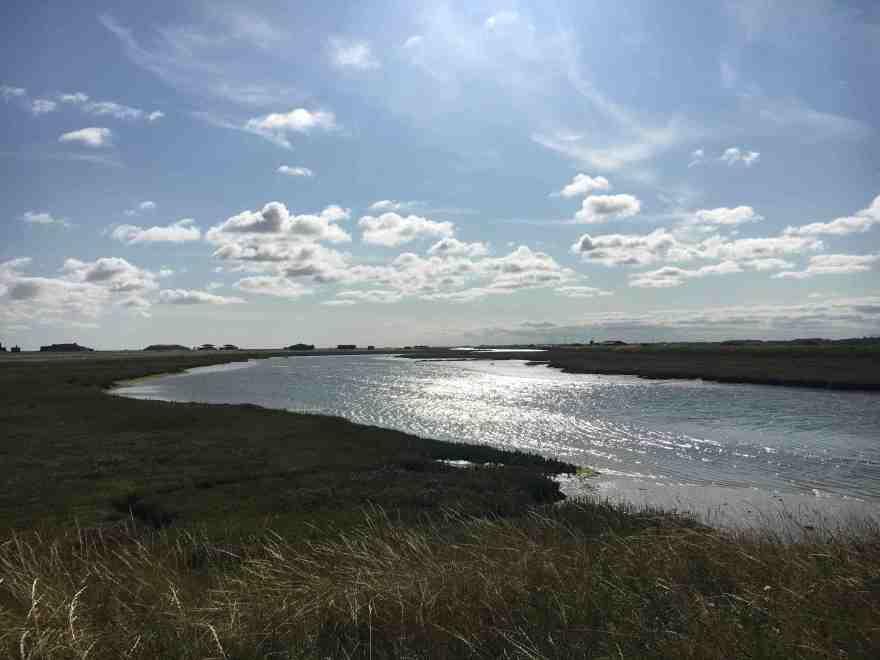 Orford Ness salt marsh
