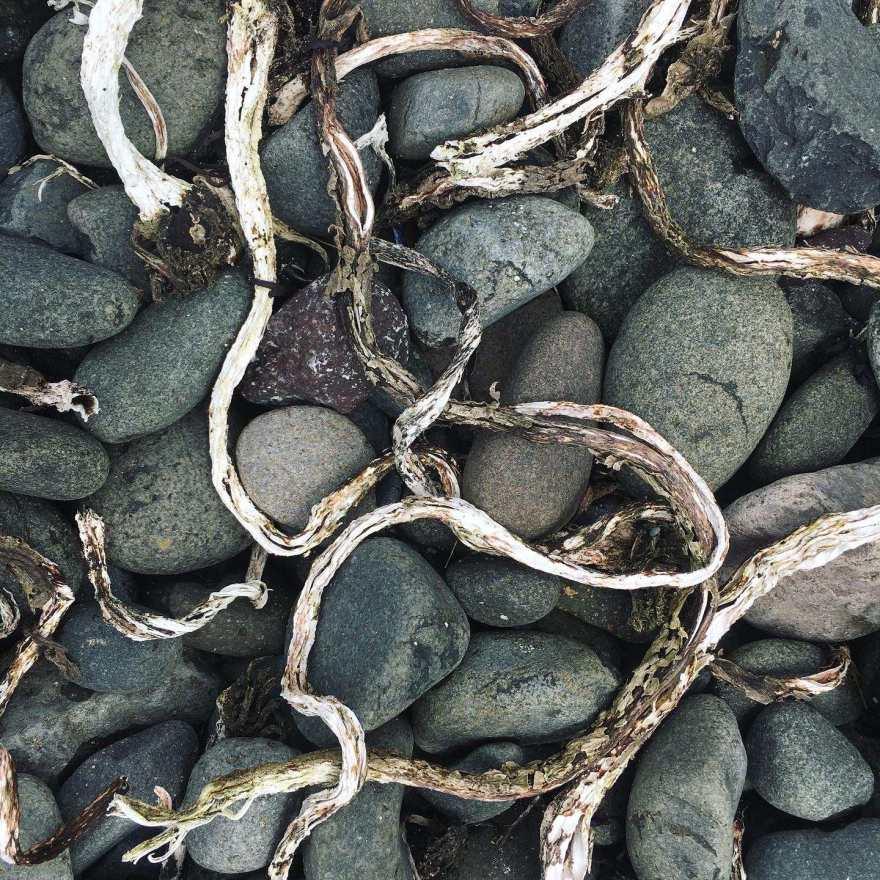 Treshnish pebbles