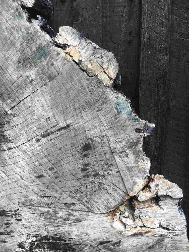 Wood at Art in Nature, Mull