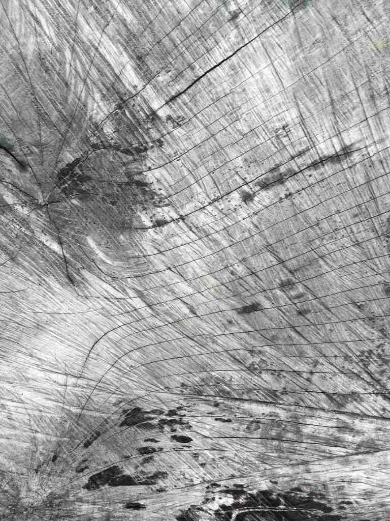 Wood detail, Art in Nature, Mull